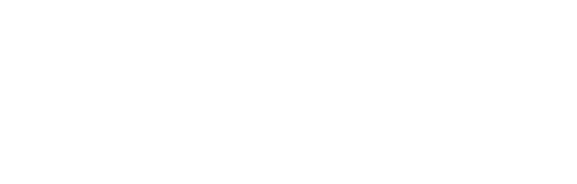 David Wu - Royal Pacific Realty Corp