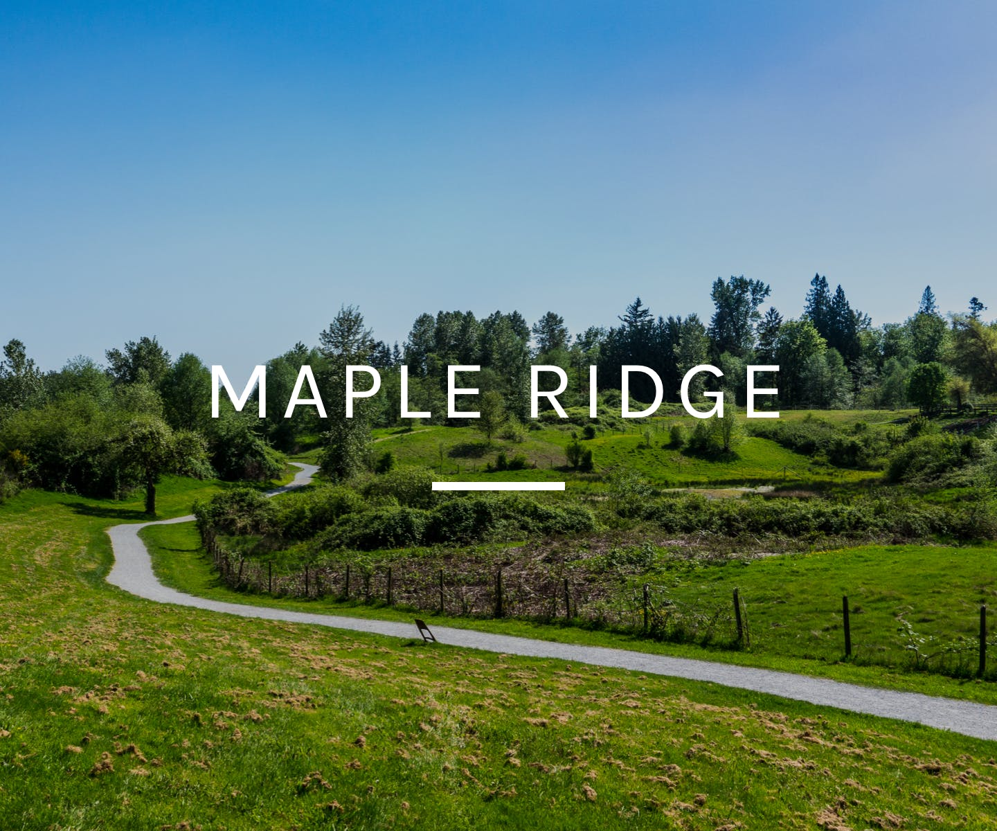 Maple Ridge