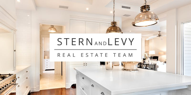 Stern and Levy Real Estate Team