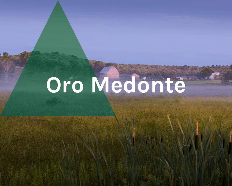 Oro-Medonte Township