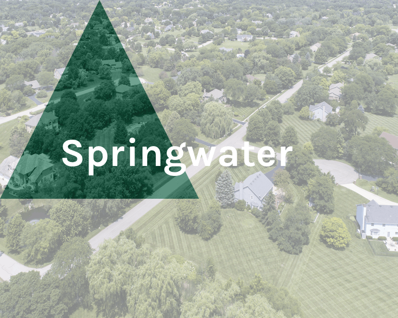 Springwater Township