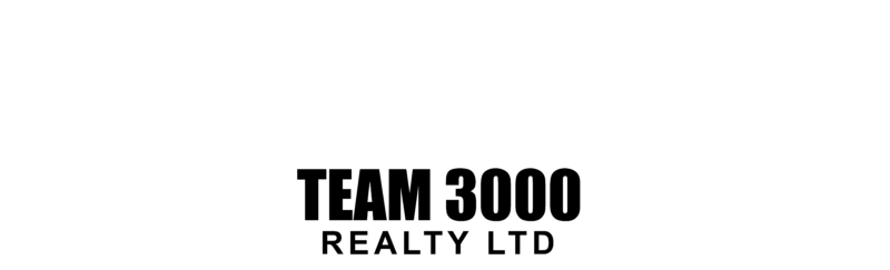 Team 3000 Realty Ltd