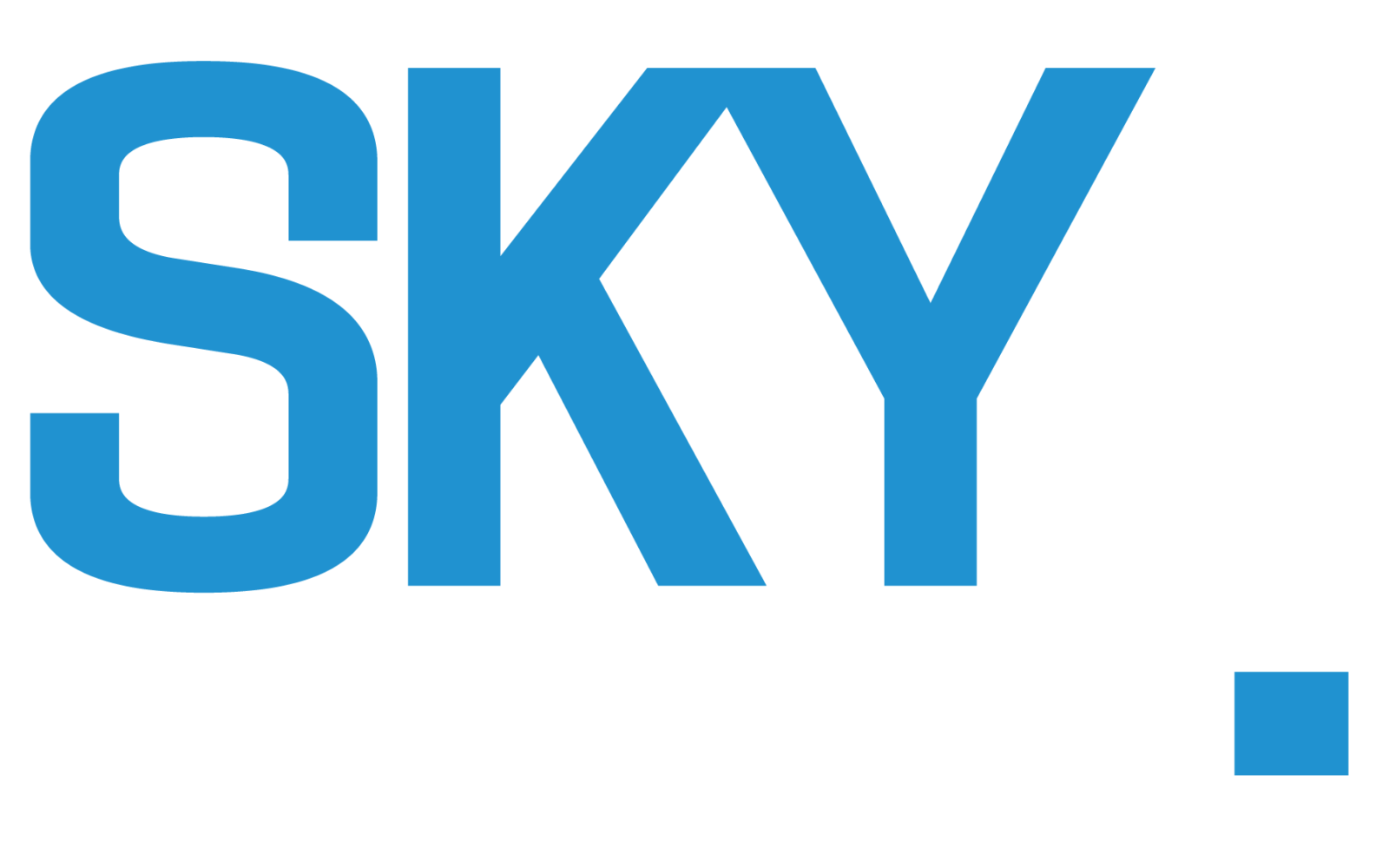 Sky Real Estate Team